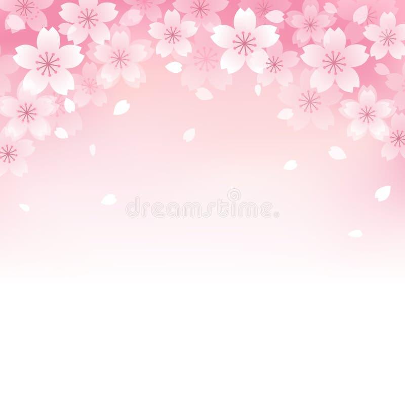 Schöner Kirschblütenhintergrund vektor abbildung