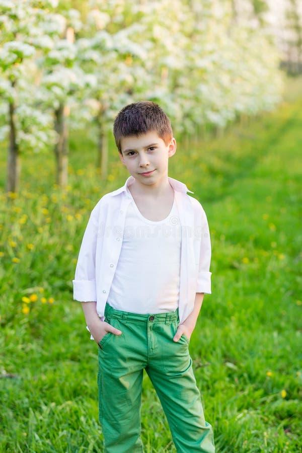 Schöner kleiner Junge in einem blühenden Garten im Frühjahr lizenzfreie stockfotografie
