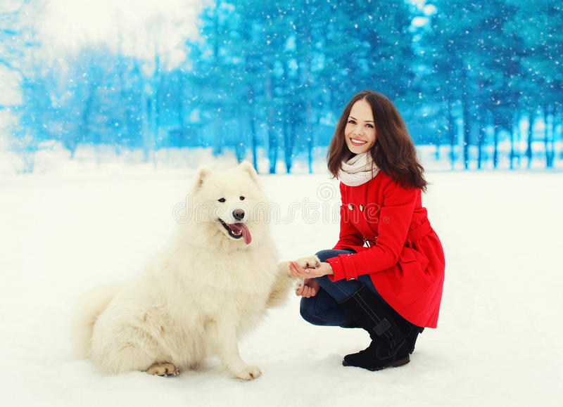 Schöner lächelnder Eigentümer der jungen Frau mit weißem Samoyedhund auf Schnee im Winter stockbild