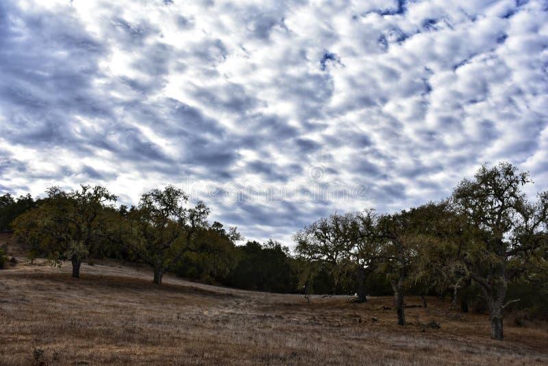 Schöner Landschaftshimmel lizenzfreie stockfotos