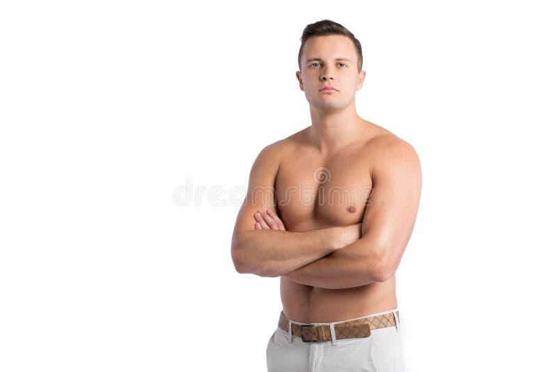 Schöner männlicher Torso stockbilder