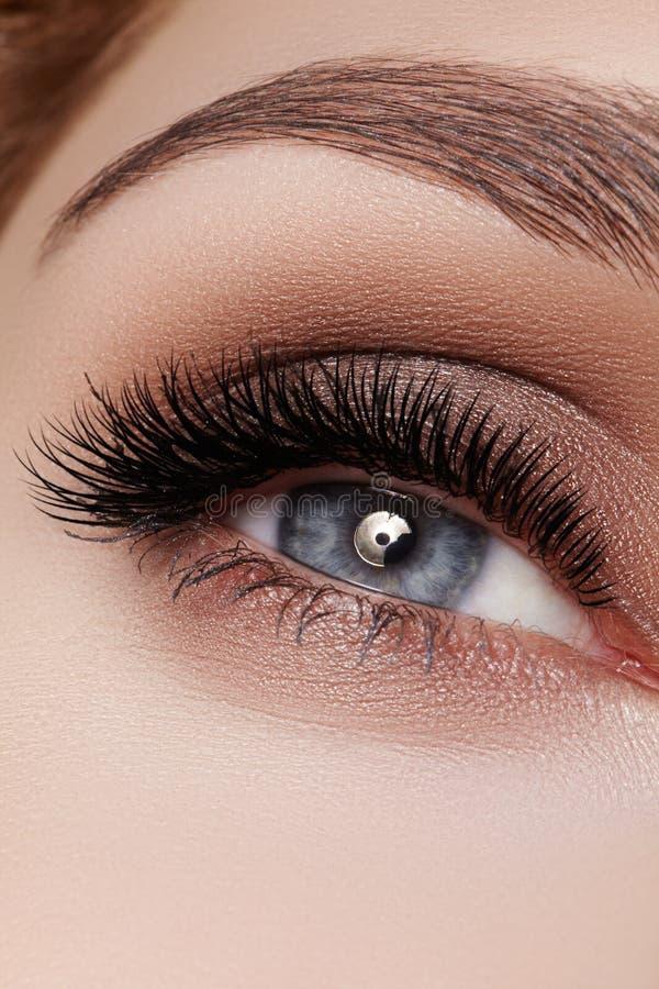Schöner Makroschuß des weiblichen Auges mit rauchigem Make-up Perfekte Form von Augenbrauen stockfoto