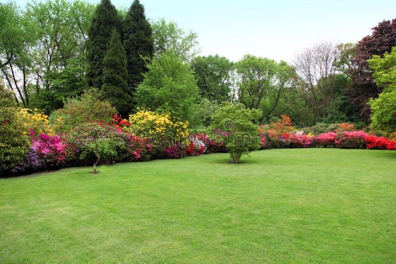 Schöner manikürter Rasen in einem Sommergarten lizenzfreie stockbilder