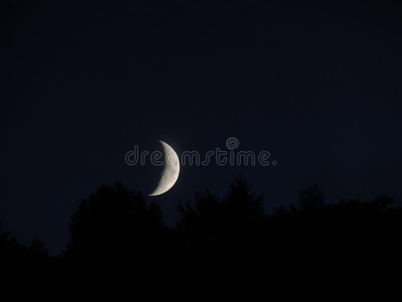 Schöner Mond stockbild