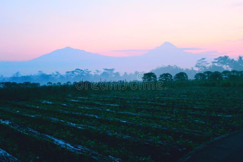 Schöner Morgensonnenaufgang in der Landschaft stockfoto