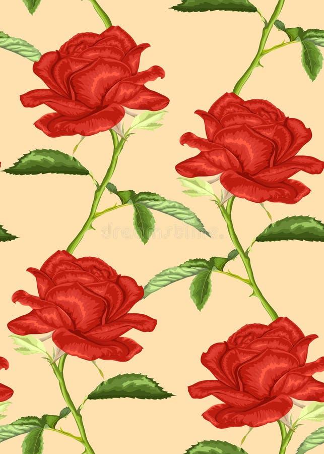 Schöner nahtloser Hintergrund mit Rosen mit Stamm und Blättern stock abbildung