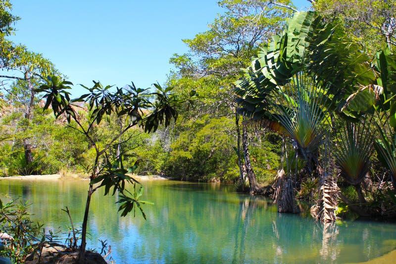 Schöner natürlicher Swimmingpool stockbilder