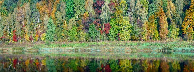 Schöner orange, roter und grüner Herbstwald, viele Bäume auf der orange Hügelpanoramareflexion auf Wasser Herbsthintergrund lang stockfotos