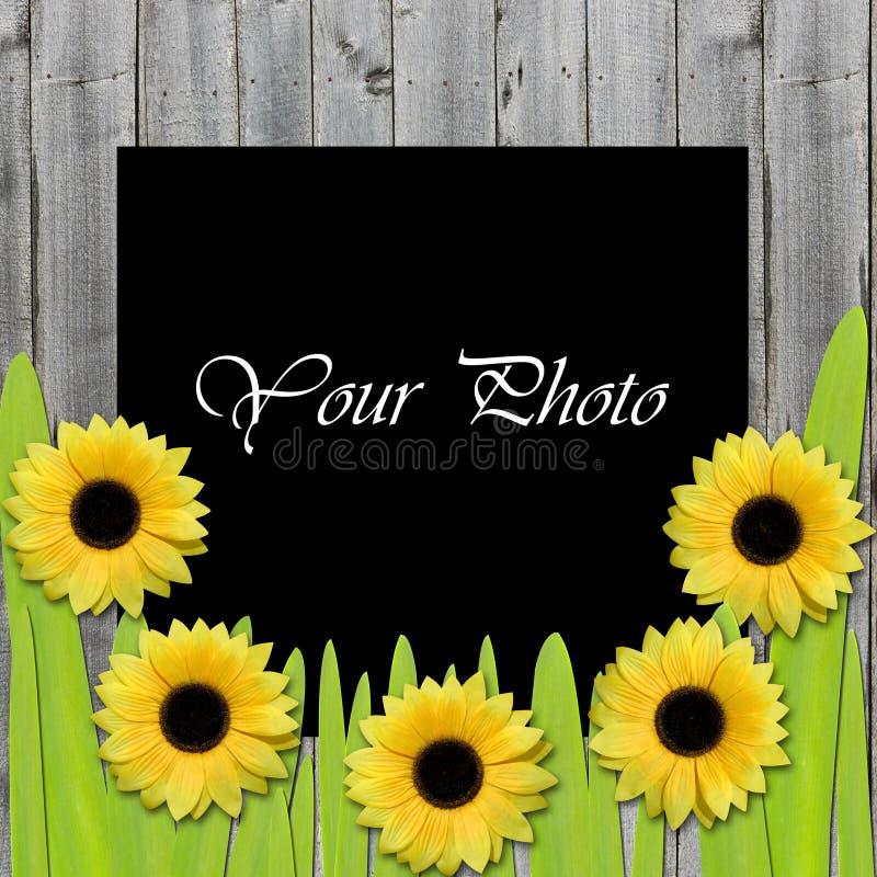 Schöner Rahmen für Foto mit Sonnenblumen lizenzfreie stockfotos