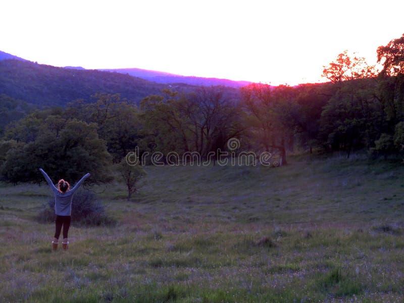 Schöner rosa Himmel, purpurrote Berge und grünes Gras stockfotografie
