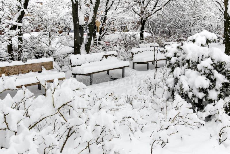 Schöner Schnee bedeckte Bänke im Park - Nürnberg, Deutschland stockfotos