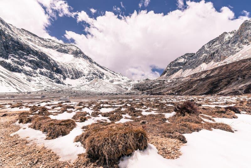 Schöner Schneeberg mit Wiese des Grases am Yading-Naturreservat stockfotografie