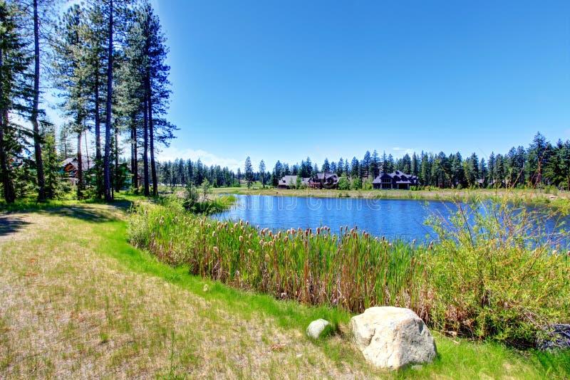 Schöner See an einem sonnigen Sommertag lizenzfreie stockbilder