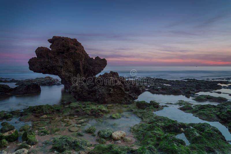 Schöner Seesonnenuntergang auf einem eleganten Stein des Hintergrundes lizenzfreie stockfotografie