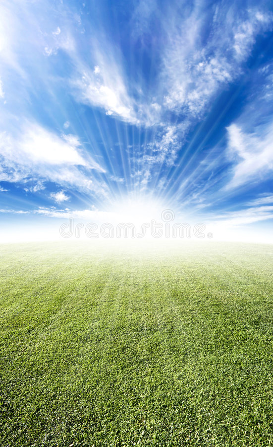 Schöner Sonneaufflackern-Wiesenhorizont stockfotografie