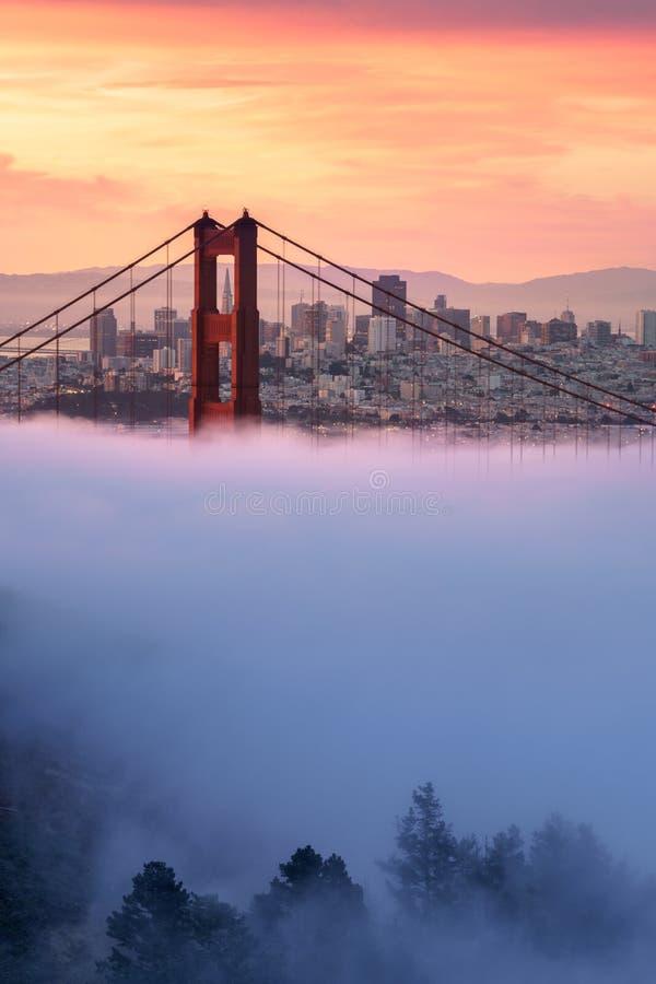 Schöner Sonnenaufgang bei Golden gate bridge im niedrigen Nebel stockbild