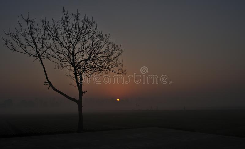 Schöner Sonnenaufgang im nebeligen Wetter stockbilder