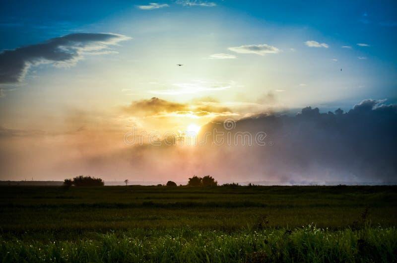 Schöner Sonnenuntergang über Feld stockbild