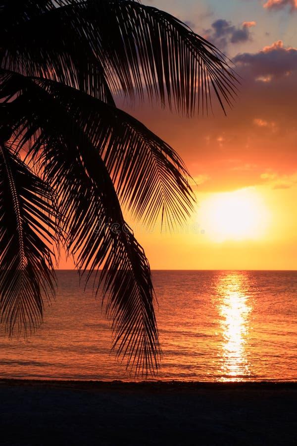 Schöner Sonnenuntergang auf dem Strand, Sonne geht unten zum Meer, Frauenschattenbild auf dem bayshore Ruhe umgebend, Erholung co lizenzfreies stockfoto
