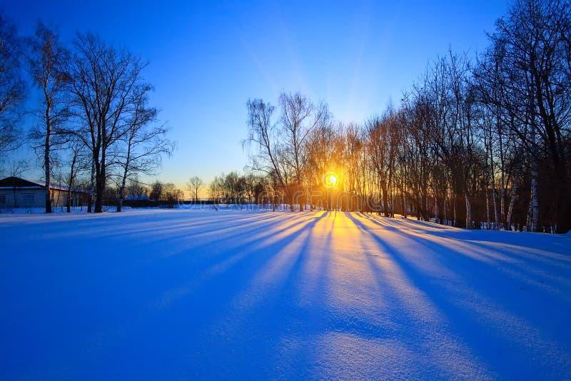Schöner Sonnenuntergang in einem Winterwald stockfotos