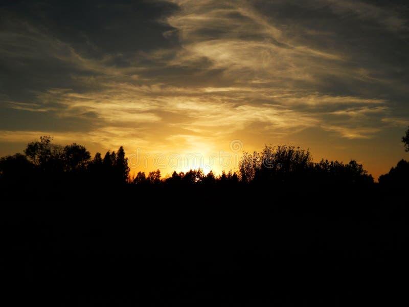 Schöner Sonnenuntergang mit blauem Himmel und Bäumen stockfotos