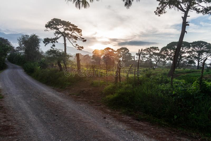 Schöner Sonnenuntergang nahe bei der Straße nach einer Waldwanderung stockbild