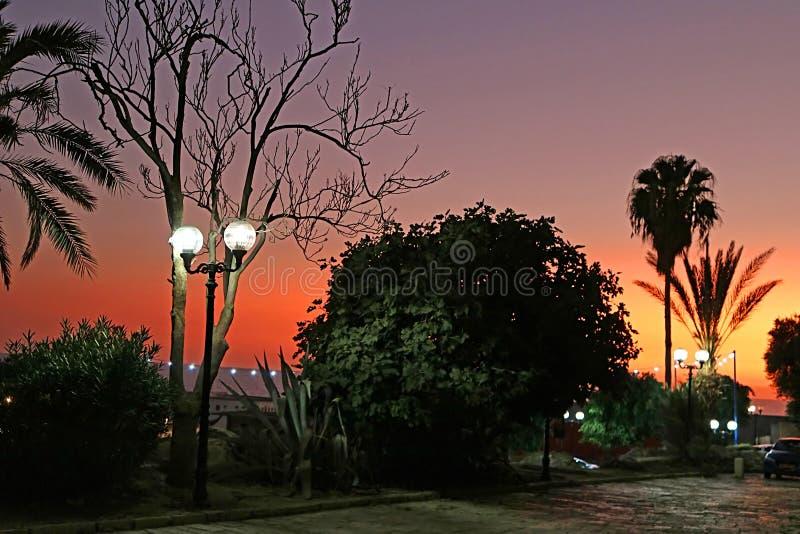 Schöner Sonnenuntergang nahe dem Damm in der alten Steinstadt Jaffa lizenzfreies stockbild