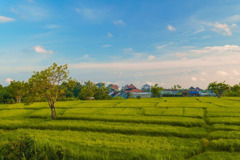 Schöner sonniger Tag in Bali, Indonesien stockfoto