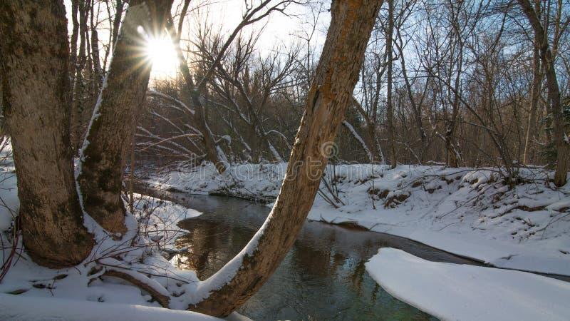 Schöner sonniger Tag des verschneiten Winters auf Wanderweg weg von einem kleinen Nebenfluss nahe Zustands-Fisch-Brutplatz-Besuch lizenzfreie stockfotografie