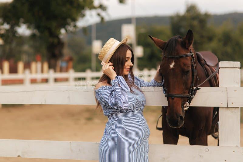 Schöner Stand der schwangeren Frau nahe dem Pferd Dame in der Strickmütze und im blauen Kleid Schönes Vieh Brown Hors lizenzfreie stockfotos