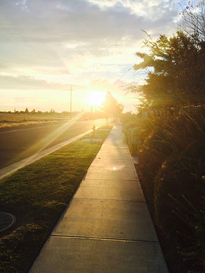 Schöner Sun stockfoto