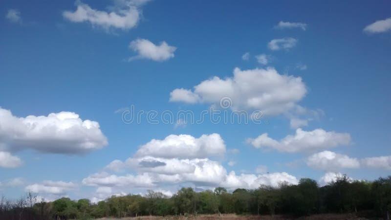 Schöner Tag an einem Park stockfotos
