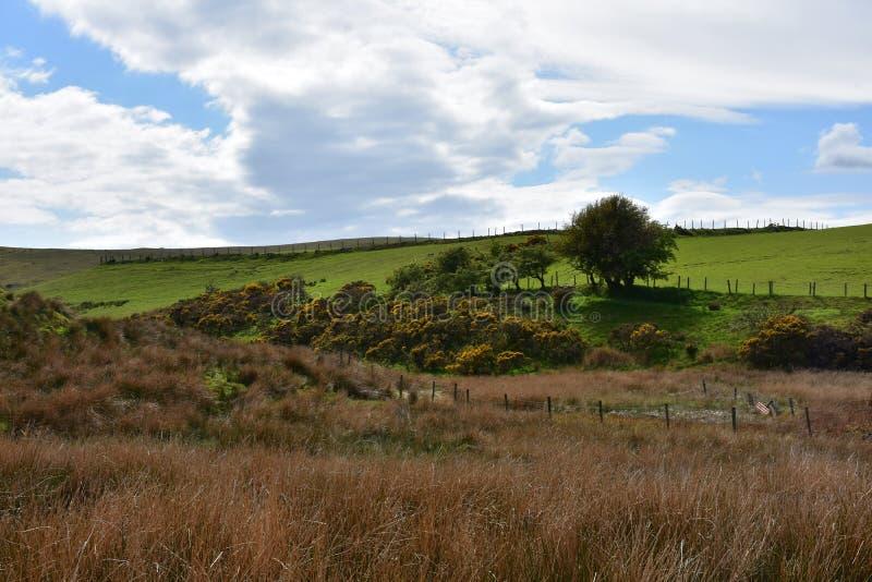 Schöner Tag im See-Bezirk in Ennerdale England lizenzfreies stockfoto