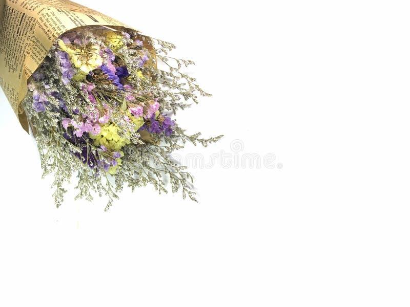 Schöner Trockenblumeblumenstrauß auf weißem Hintergrund lizenzfreie stockfotos