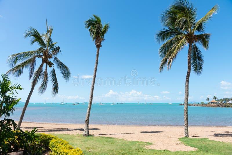Schöner tropischer Airlie-Strand in Queensland, Australien stockfotografie