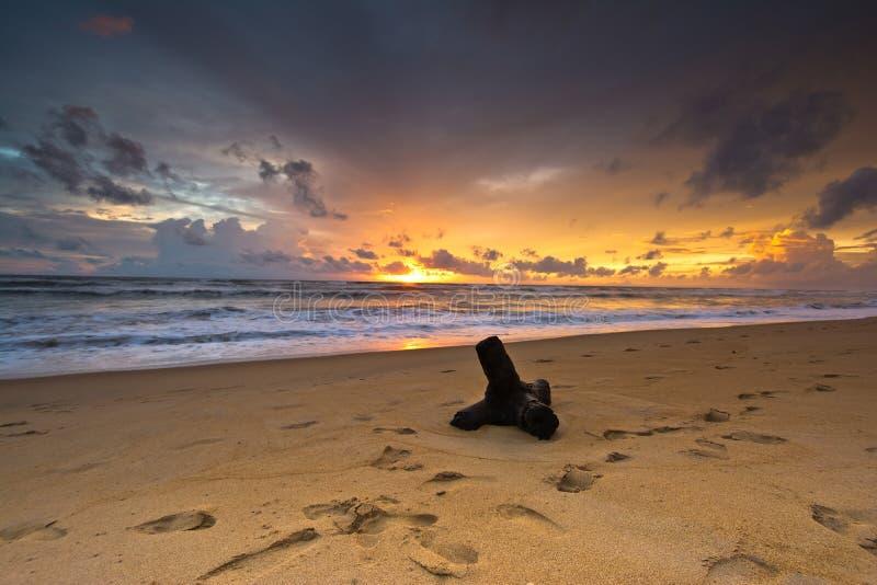 Schöner tropischer Strand in Sri Lanka stockbilder