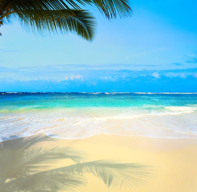 Schöner unberührter tropischer Strand der Kunst See stockfoto