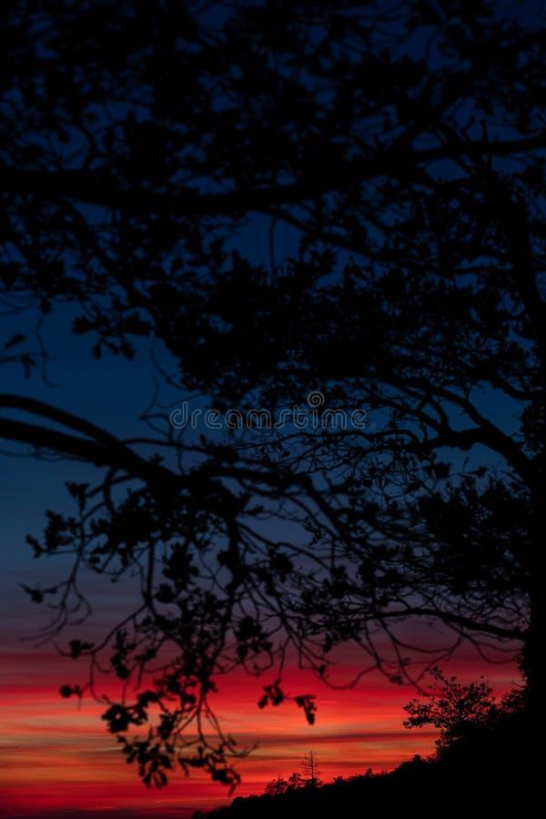 Schöner und bunter Sonnenuntergang über dem Wald und dem Fluss stockbild
