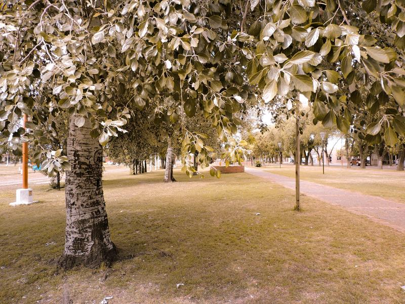 Schöner und ruhiger Park in einer Kleinstadt lizenzfreie stockfotografie