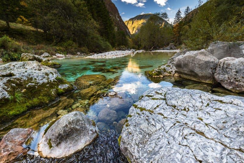 Schöner und unverdorbener Soca-Fluss in Slowenien lizenzfreie stockfotos