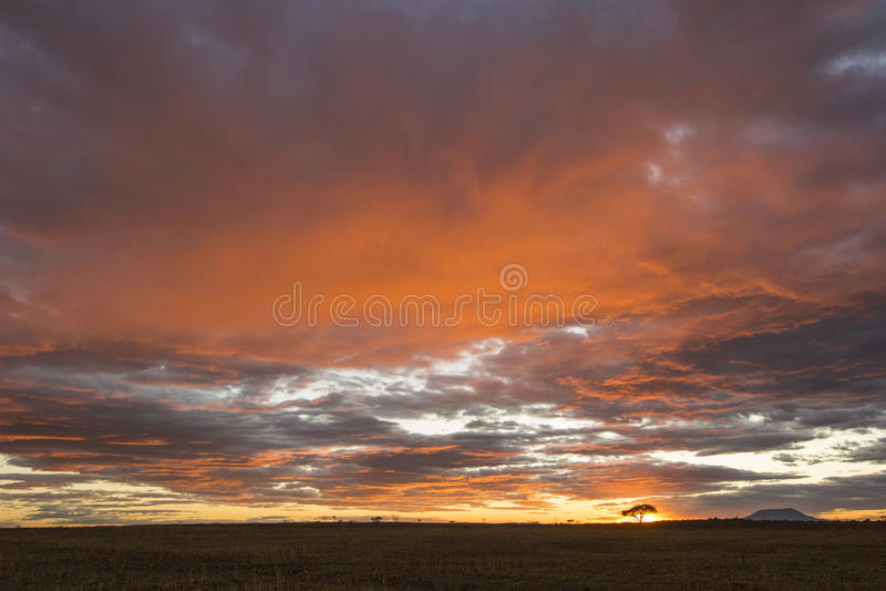 Schöner vibrierender bunter Sonnenaufgang lizenzfreies stockbild