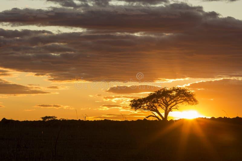 Schöner vibrierender bunter Sonnenaufgang lizenzfreie stockbilder