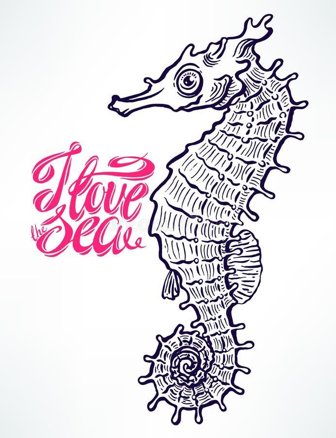 Schöner von Hand gezeichneter Seahorse vektor abbildung