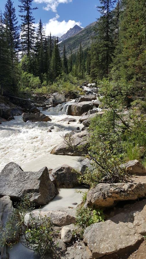 Schöner Wasserfall auf den Kanadier Rocky Mountains lizenzfreies stockbild