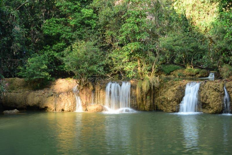 Schöner Wasserfall im Regenwald stockfotos