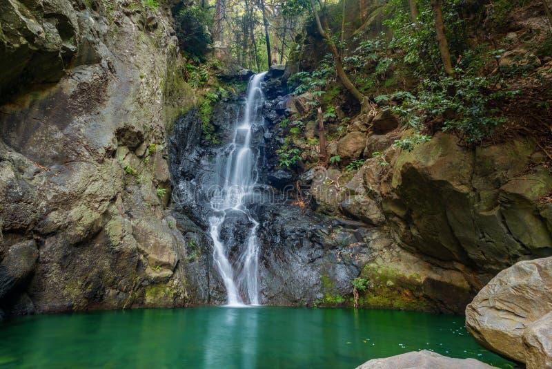 Schöner Wasserfall in Madeiras tropischem Regenwald lizenzfreies stockfoto