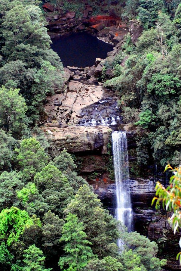Schöner Wasserfall in Morton National Park, Australien lizenzfreies stockfoto