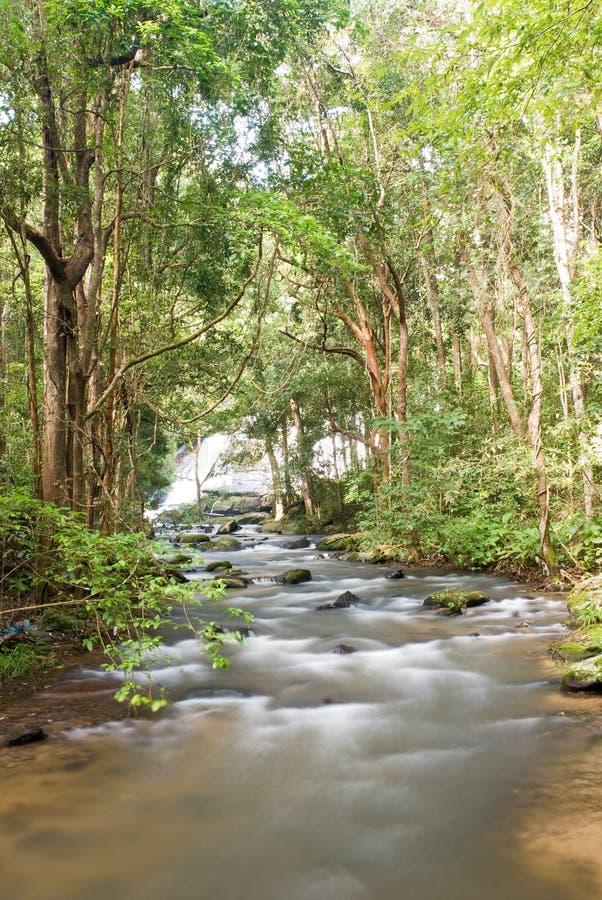 Download Schöner Wasserfall In Thailand Stockbild - Bild von fluß, landschaft: 27732089