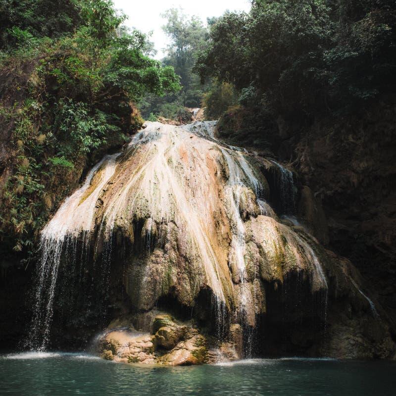 Schöner Wasserfall in tropischen Wald lizenzfreie stockfotos