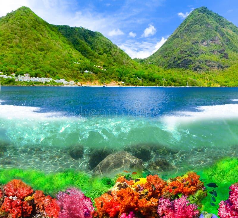 Schöner weißer Strand in der St. Lucia, Karibikinseln stockbild